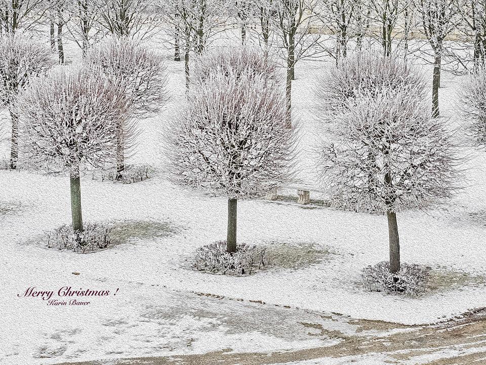 C020271-Winterkarte-2.jpg